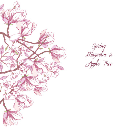 magnolia tree: Background with magnolia and apple tree. Hand drawn spring flowers. Vector illustration