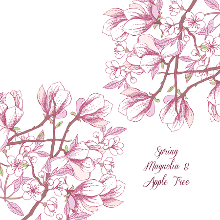 magnolia: Background with magnolia and apple tree. Hand drawn spring flowers. Vector illustration
