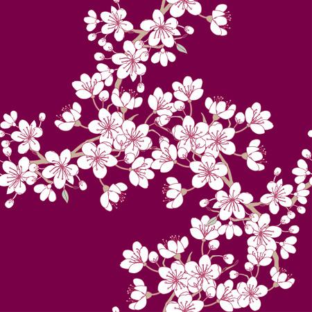 flor de cerezo: Patrón sin fisuras con sakura. dibujados a mano de árboles de flor de primavera. Ilustración del vector con las flores de cerezo.
