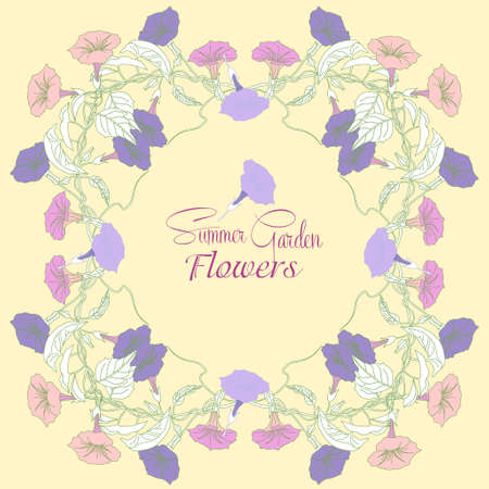 flower designs: Background with  bindweed  flowers. Vector illustration