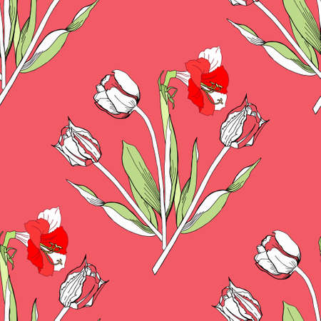 flower red: Seamless pattern with amaryllis and tulip.Vector Illustration