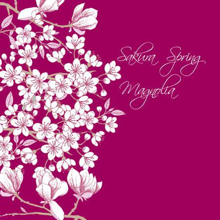 flor de sakura: Antecedentes con sakura y magnolia. dibujados a mano de árboles de flor de primavera. Ilustración del vector con las flores de cerezo.