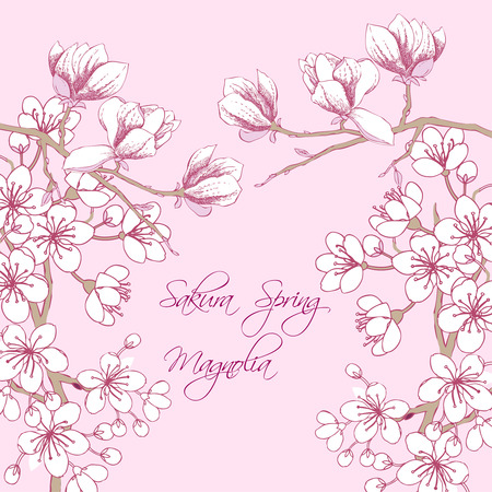 magnolia tree: Background with sakura and magnolia. Hand drawn spring blossom trees. Vector illustration with cherry blossoms.