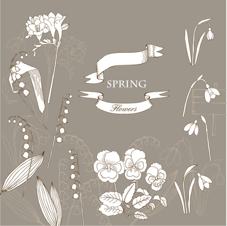 valley: Background with  lily of the valley, galanthus and pansy. Hand drawn snowdrops flowers sketches. Vector Illustration Illustration