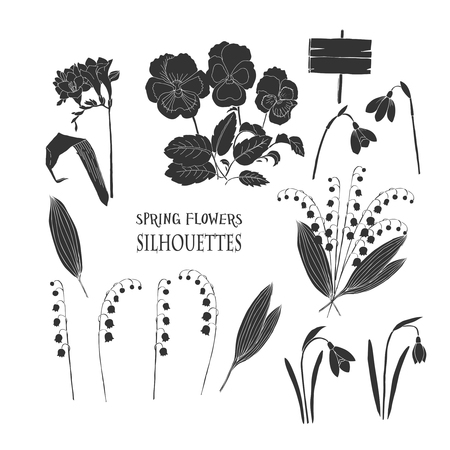 lily of the valley: Background with  lily of the valley, galanthus and pansy. Hand drawn snowdrops flowers sketches. Vector Illustration Illustration