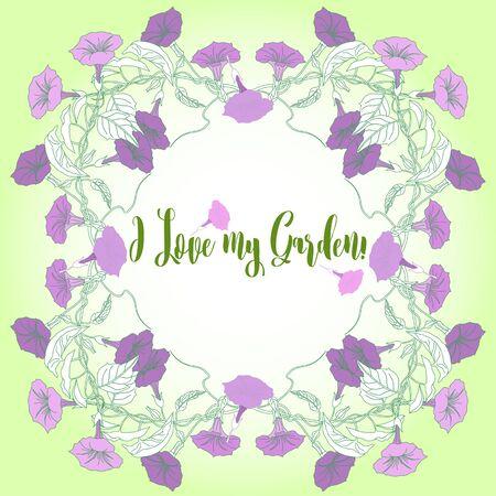 bindweed: Garden Background with  bindweed  flowers Illustration