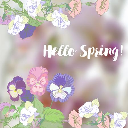bindweed: Spring background with  bindweed. Illustration