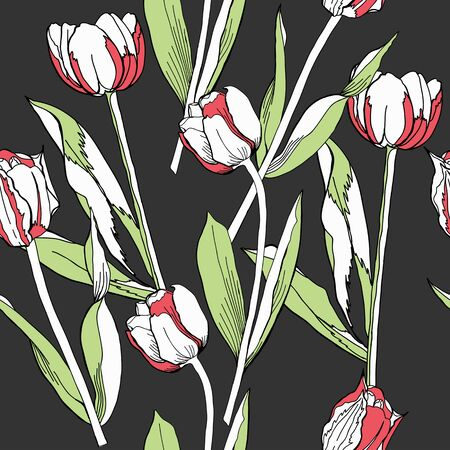 vintage floral pattern: Seamless pattern with tulips.Spring