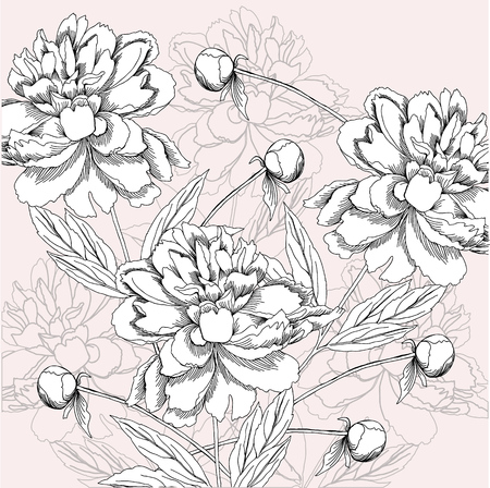 Background with black and white peony. Imagens - 90306713