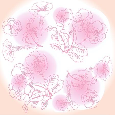 Pink pansies and bindweed. Иллюстрация