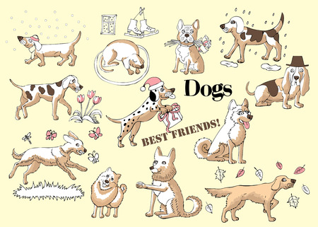 Funny Dogs Sketches. Hand drawn  animals vector illustration