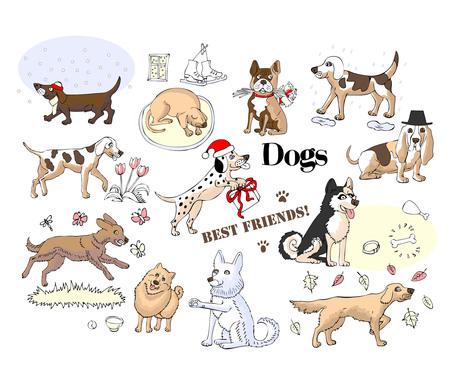 Funny Dogs Sketches. Hand drawn animals vector illustration Illustration