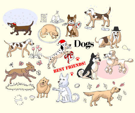 Funny Dogs Sketches Set. Hand drawn animals vector illustration