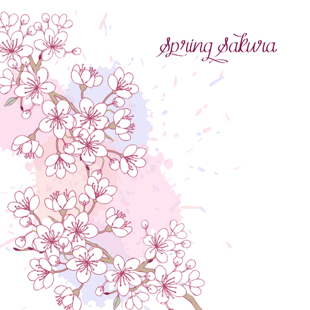 Background with sakura. Hand drawn spring blossom trees. Vector illustration with cherry blossoms. Illustration