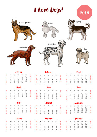 Dog  calendar 2019. Dogs of different breeds sketches