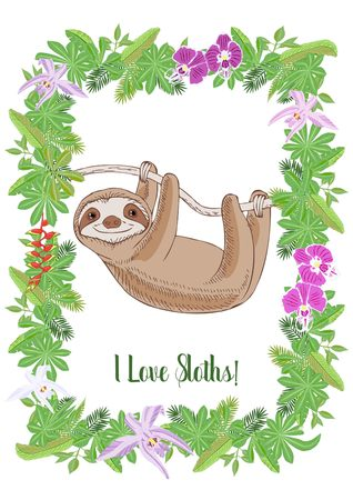 Sloth in Jungle. Animal and Plants sketches. Hand Drawn Background. Vector Illustration