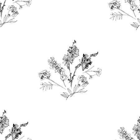 Seamless pattern with Wild Flowers with Summer Botanical Sketches Illustration