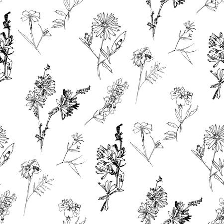 Modello senza cuciture con fiori selvatici con schizzi botanici estivi