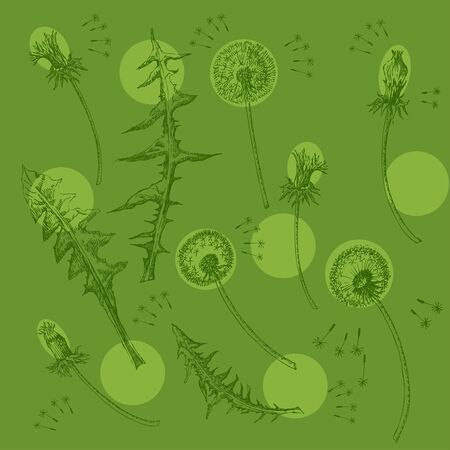 Dandelions Flowers Seamless Pattern.  Hand drawn sketches Imagens - 132359321