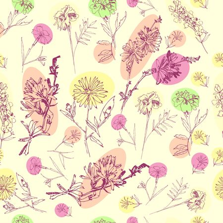 Seamless Pattern with Wild Flowers Sketches. Botanical Hand Drawn  Illustration Imagens - 127769781