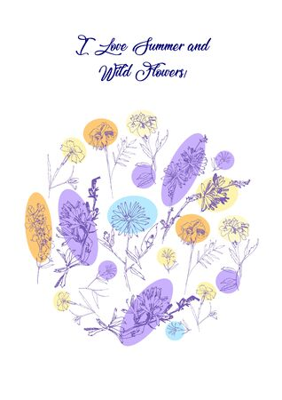 Floral Poster with Wild Flowers Sketches. Botanical Hand Drawn   Illustration Illustration