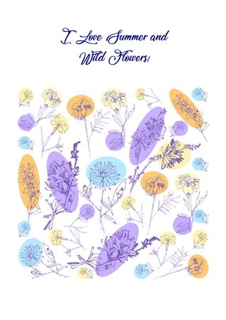 Floral Poster with Wild Flowers Sketches. Botanical Hand Drawn   Illustration Imagens - 127770022