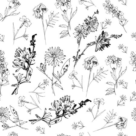 Seamless Pattern with Wild Flowers Sketches. Botanical Hand Drawn  Illustration Ilustração
