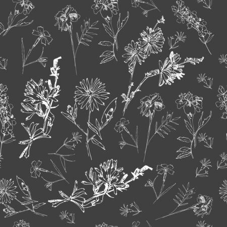 Seamless Pattern with Wild Flowers Sketches. Botanical Hand Drawn  Illustration Illustration