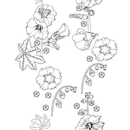 Malva seamless pattern Summer Flowers Sketches. Hand Drawn Digital Illustration