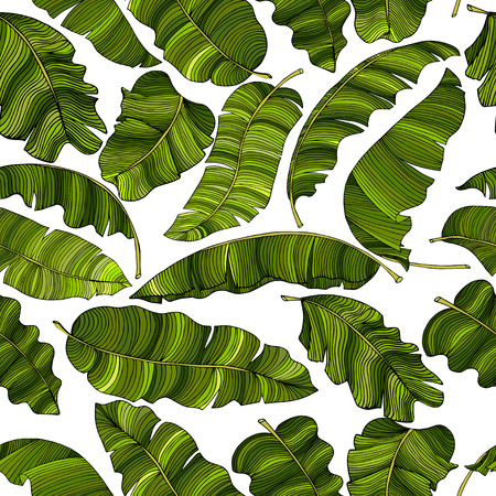 Seamless pattern of green leaves, randomly scattered background. Decorative image with tropical foliage. Ilustrace