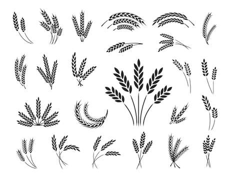 Set of wheat ear icons isolated on a white background Иллюстрация
