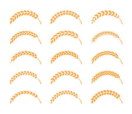 Set of simple wheats ears icons and wheat design elements, organic wheats local farm fresh food, bakery