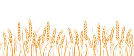 Ears of wheat in field horizontal border seamless pattern