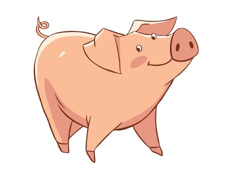 cerdo caricatura: Cerdo Vectores