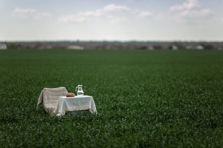 Still life with bread and milk on a table in the middle of a green field and blue sky.