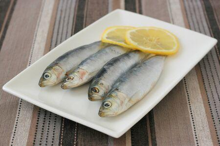 sardinas: Sardinas frescas con lim�n en un plato Foto de archivo