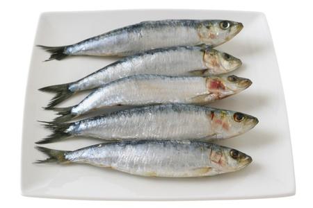 sardine: sardine su un piatto Archivio Fotografico