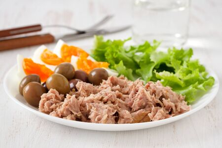 salad plate: salad with tuna Stock Photo