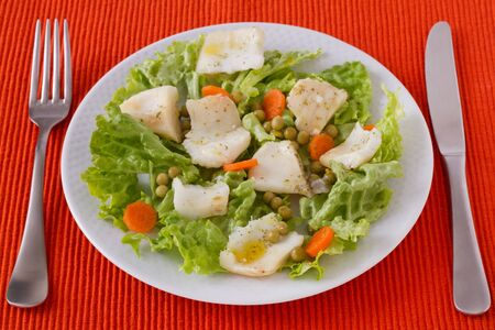fish salad in the white plate Stock Photo - 12843282