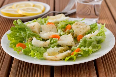 fish salad in the white plate Stock Photo - 12843254