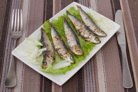 sardinas: sardinas fritas sobre lechuga Foto de archivo