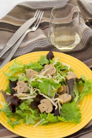salad with mushrroms and  bean sprouts Stock Photo - 15917258