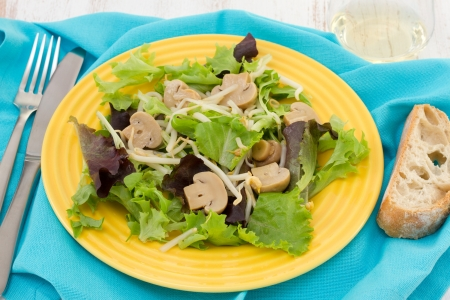 lettuce with mushrroms and  bean sprouts on the plate Stock Photo - 15917255