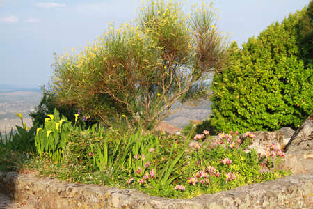 mediaval: tree and flowers