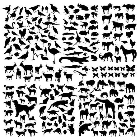 Big animals silhouettes set