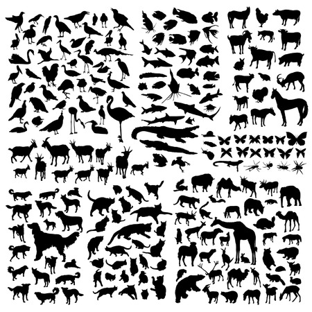 Los animales grandes Siluetas juego Foto de archivo - 38231810