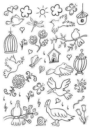 Hand Drawn Cartoon Birds Set Vector