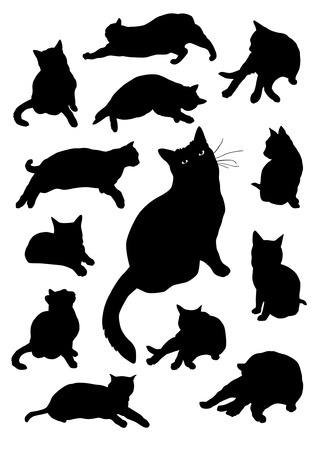 black cat silhouette: Silhouettes of cats