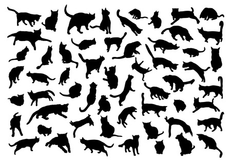animal silhouette: Silhouettes of cats