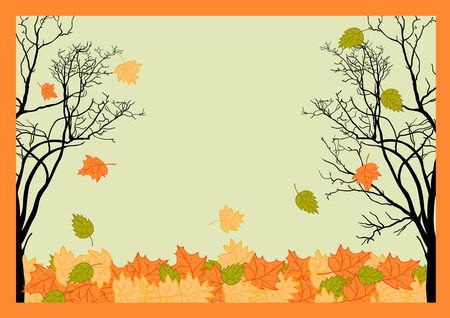 cooper: Autumn Color Frame